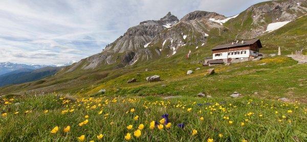 Sommer Präsentationsbild Berghütte Sesvenna