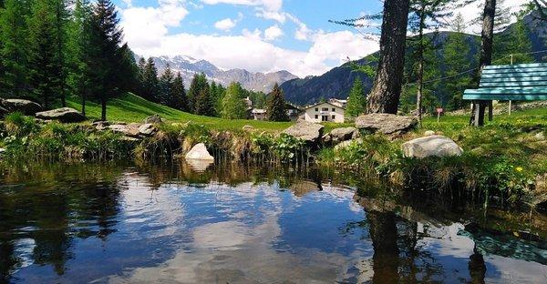 Sommer Präsentationsbild Infopoint Campodolcino