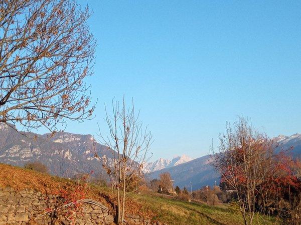 Panorama Castello di Fiemme