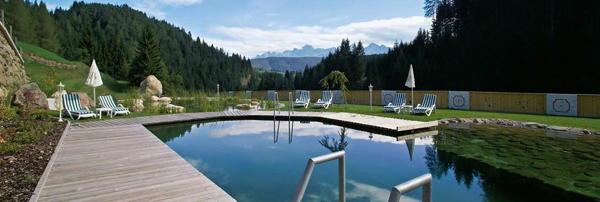 La piscina Hotel Schwarzenbach