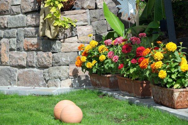 Foto del giardino Nova Ponente
