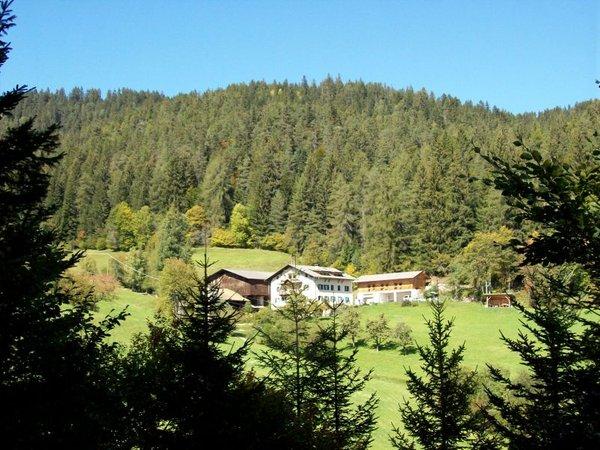 La posizione Appartamenti in agriturismo Köhlhof Nova Ponente