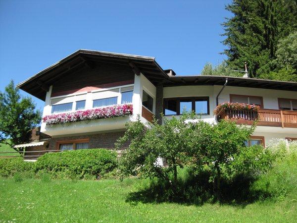 Foto Außenansicht im Sommer Haus Helga