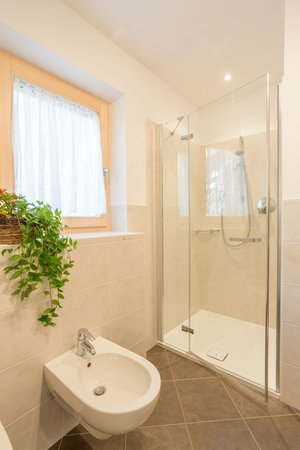 Photo of the bathroom Farmhouse apartments Tschandlhof