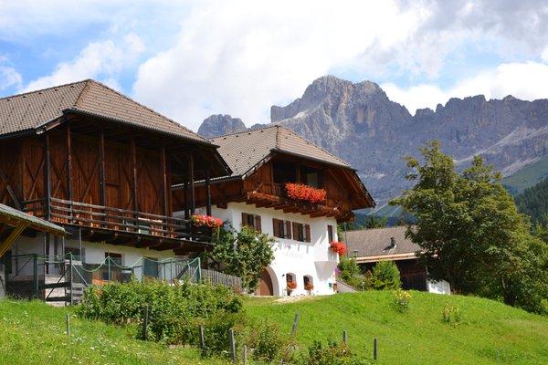 Sommer Präsentationsbild Ferienwohnungen auf dem Bauernhof Tschandlhof