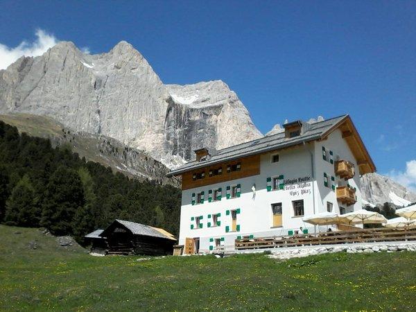 Foto estiva di presentazione Rifugio Stella Alpina Spiz Piaz