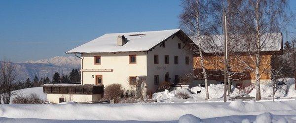 Foto esterno in inverno Höggerhof