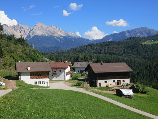 Foto esterno in estate Unterkoflhof