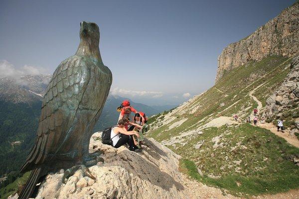 Attività estate Val d'Ega