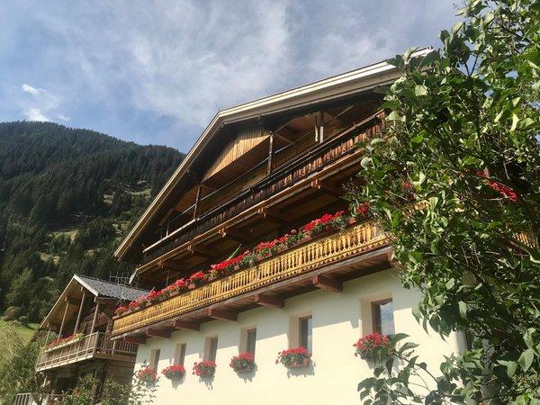 Sommer Präsentationsbild Ferienwohnungen Grieshof am Pühel