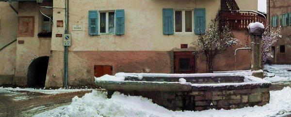 Gallery Tesero inverno