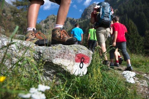 Summer activities Merano / Meran and surroundings