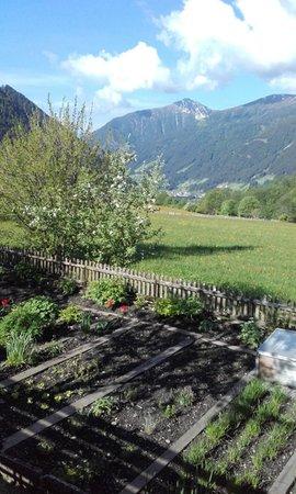 Foto vom Garten Antholz