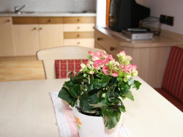 Photo of the kitchen Ciasa Puntin