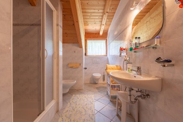 Photo of the bathroom Farmhouse apartments Bad Bergfallerhof