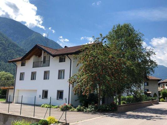 Foto esterno in estate Angeli Dolomiti House