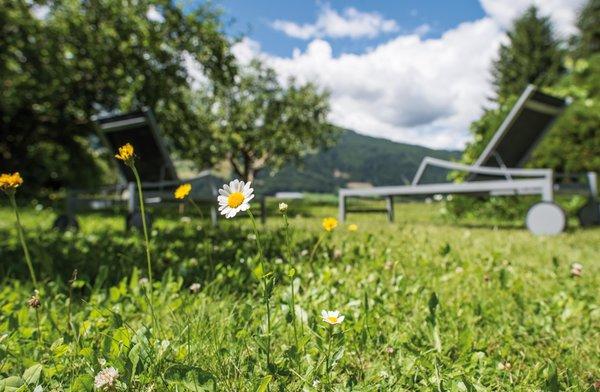 Foto del giardino Valdaora di Sopra (Valdaora)