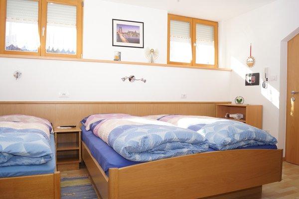 Photo of the room Apartments Felder Erika