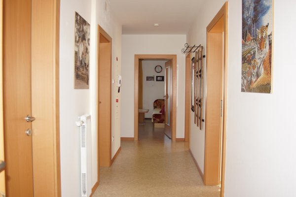 Photo of the apartment Felder Erika