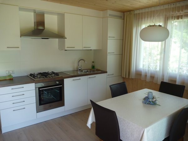 Photo of the kitchen Abfalterer