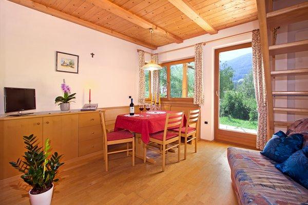 The living area Farmhouse apartments Grünbacherhof
