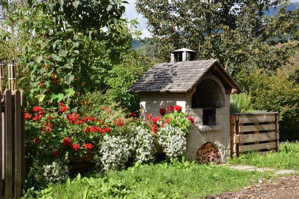 Foto del giardino Chienes