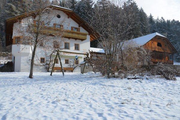 Winter Präsentationsbild Falkenau - Zimmer + Ferienwohnungen auf dem Bauernhof 4 Blumen