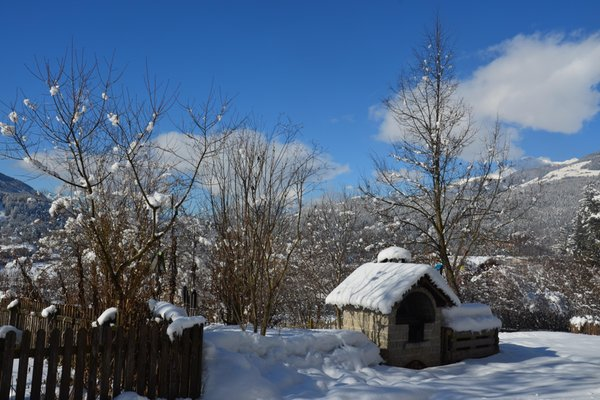 Foto Außenansicht im Winter Falkenau
