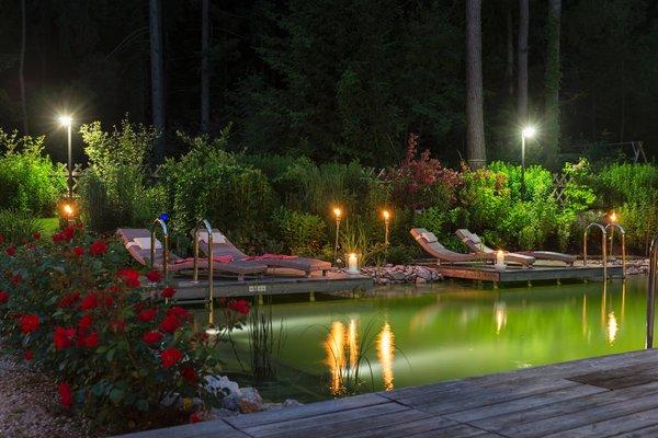 La piscina Hotel Burgfrieden