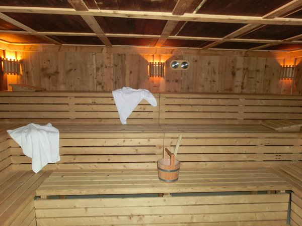 Photo of the sauna Gais