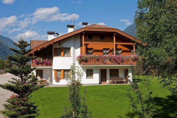 Foto esterno in estate Bäckhof