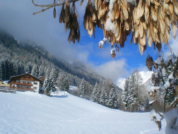 Foto esterno in inverno Alpegger