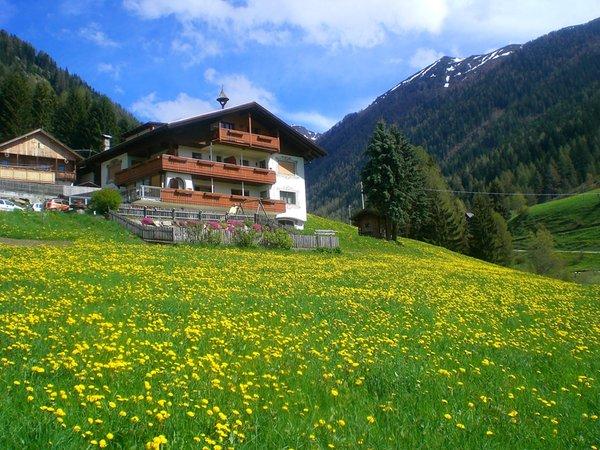 Foto esterno in estate Alpegger
