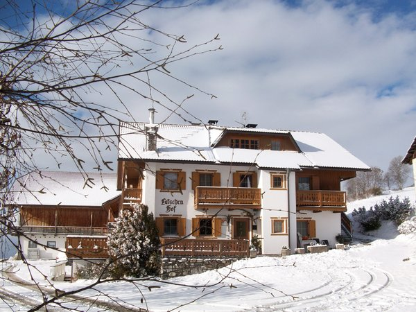 Foto invernale di presentazione Latschenhof - Appartamenti in agriturismo 3 fiori