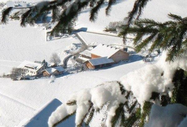 Foto invernale di presentazione Appartamenti in agriturismo Mair am Graben
