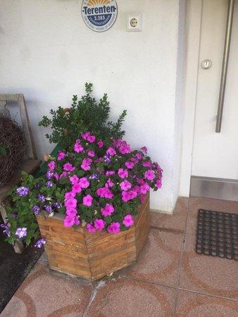 Foto einiger Details  Gasserhof Apartments in Margen
