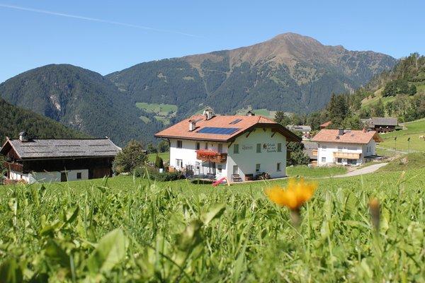 Foto Außenansicht im Sommer Gasserhof Apartments in Margen