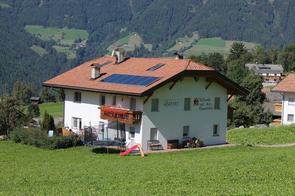 Sommer Präsentationsbild Gasserhof Apartments in Margen - Ferienwohnungen auf dem Bauernhof 2 Blumen