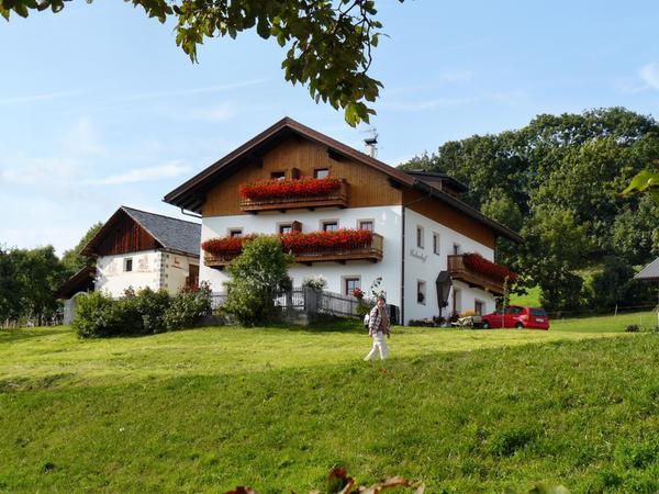 Sommer Präsentationsbild Huberhof - Ferienwohnungen auf dem Bauernhof 3 Blumen