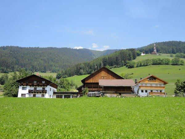 Foto estiva di presentazione Unterleitnerhof - Appartamenti in agriturismo 1 fiore
