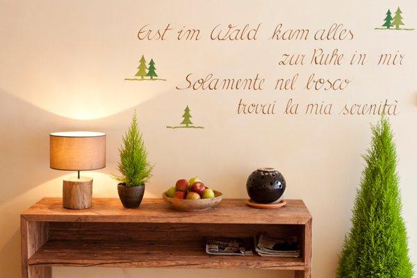 Foto del wellness Hotel Falken