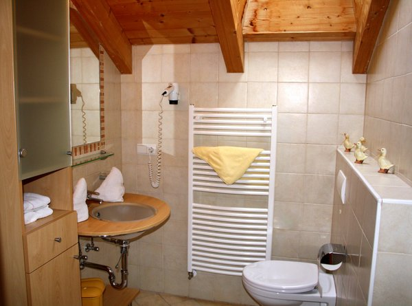 Photo of the bathroom Farmhouse apartments Gasserhof