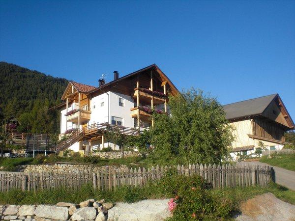 Photo exteriors in summer Gasserhof