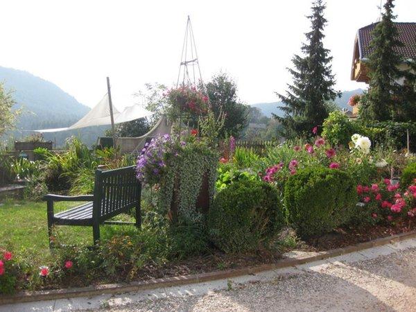 Foto del giardino Issengo (Falzes)