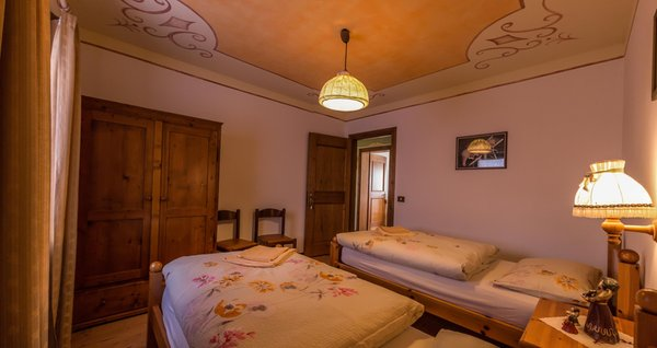 Photo of the room Apartments Casa Canazei