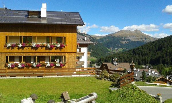Foto esterno in estate Giglio Rosso