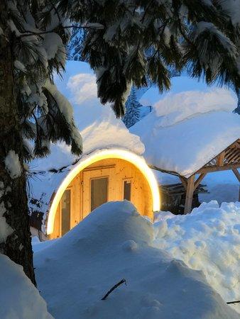 Photo of the sauna Malga Ciapela
