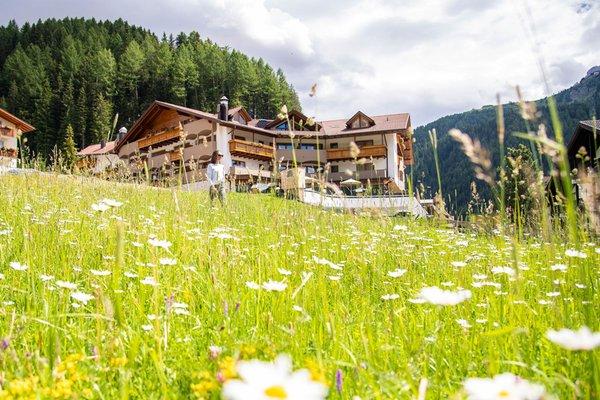 Foto Außenansicht im Sommer Miravalle