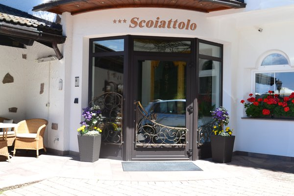 Foto esterno in estate Scoiattolo