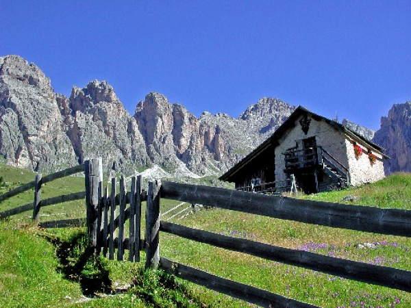 Alpin Hotel Val Gardena